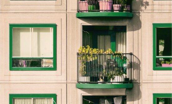 Control de plagas en Zaragoza para comunidades de vecinos