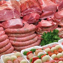 Control de plagas carnicería Zaragoza